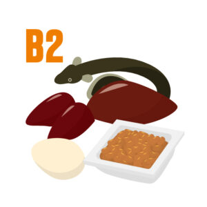 ビタミンB2イメージ
