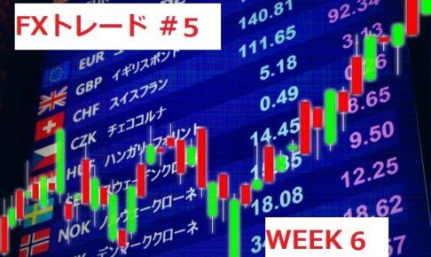 fxweek6